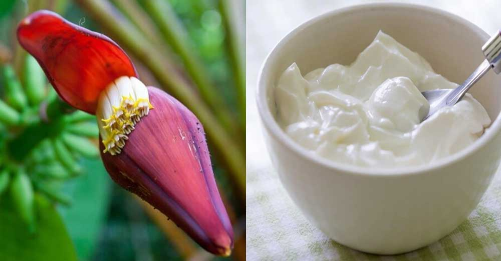 Banana-Flower-And-Dahi